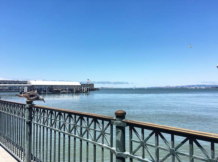 FERRY BUILDING views
